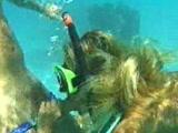 Crazy underwater blowjob