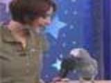 Amaing Einstein - The Genius Parrot