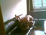 Amateur fuck on the leather couch