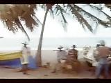 Desirs sous les tropiques (1979)