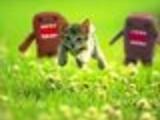 Cliche KittenAndDomokuns