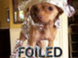 YouAre Foiled