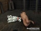 Dog Sex BDSM - Dog Videos
