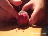 Piercing Throbbing Cock With Needle - Blood Videos